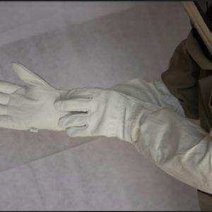 1904 Goatskin Gloves